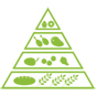 Infants Lesson Plan Food Pyramid